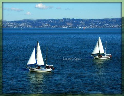 11.30.12.sailboats