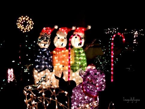 12.08.12.lights
