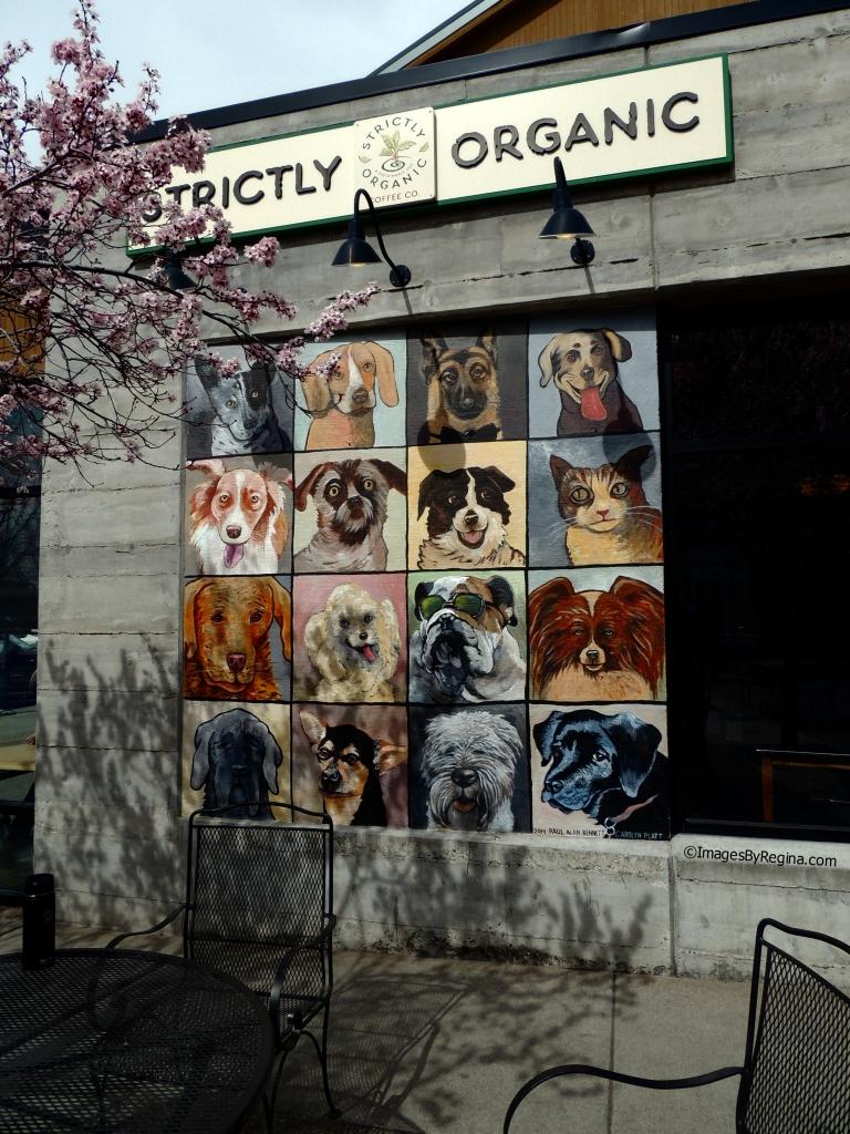 03.20.15.DogTiles